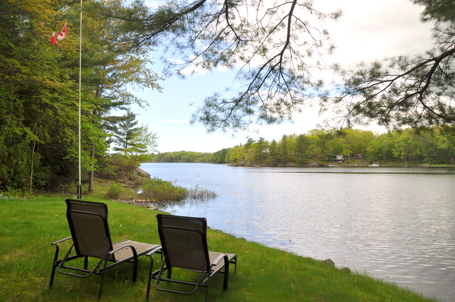 cottage 266 for rent on gibson lake near bala in district