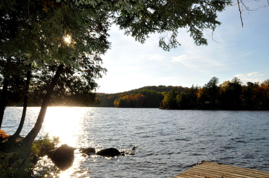 Cottage 315 For Rent On Lake Of Bays Near Dwight In